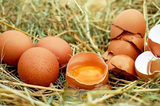 kırılmış ve bütün haldeki yumurtalar ve yumurta içi